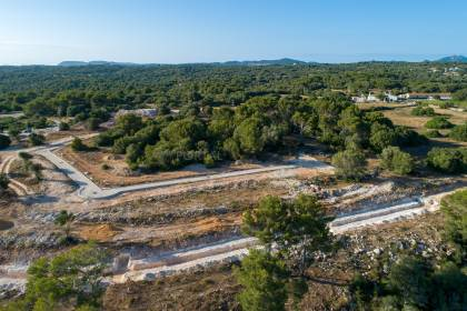 Buildable plots with sea views in Santo Tomás