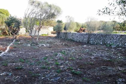 Plot building of 623 meter square in Northampton, Menorca.