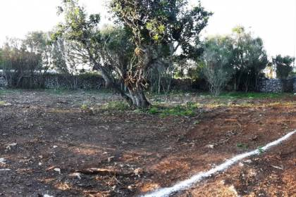 Plot for sale of 662 meters square in Northampton, Menorca.