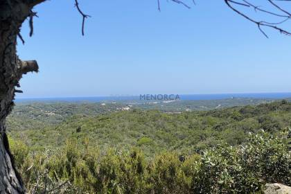 Large plot of more than 10,000 m 2 with views of the coast North and Park S'albufera in Serra Morena, Mahon.
