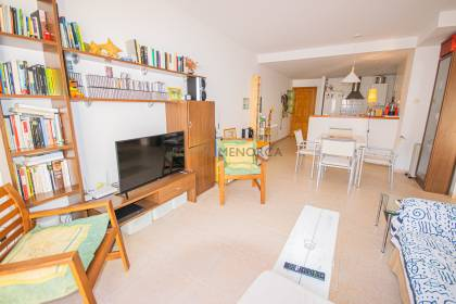 Ground floor flat with large terrace